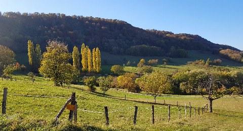Wandern im Neuffener Tal