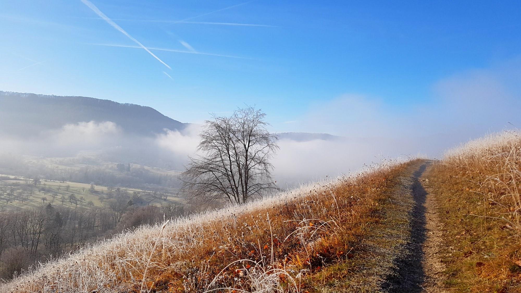 Wandern in Neuffen am Fuß der Schwäbischen Alb