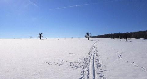 Winter Schwäbsiche Alb